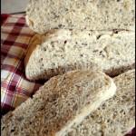 Pane al vapore Bimby