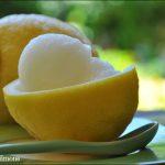 Sorbetto al limone (senza gelatiera)