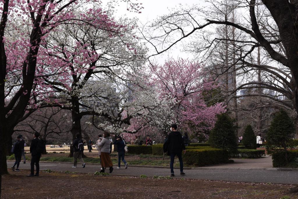 Shinjuku_Gyoen_Parco